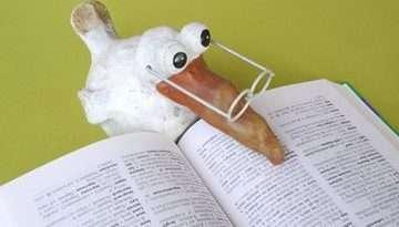 libri_inglese