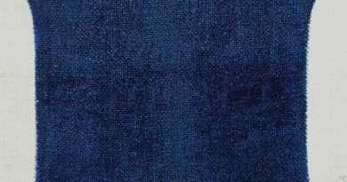 Alfonso Talotta, La Pelle della Pittura, 2016, olio su tela tamburata, cm.80x54,5