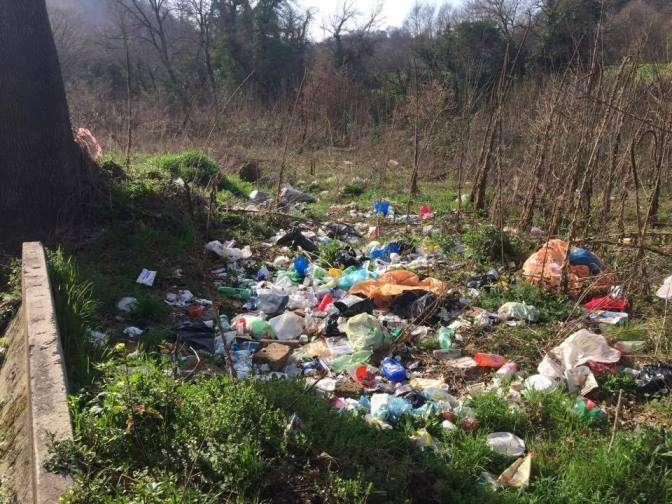 Flaminia rifiuti