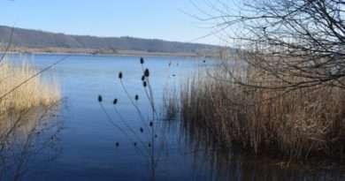 Viterbo, Moronese chiede un tavolo al ministero per risolvere i problemi del lago di Vico