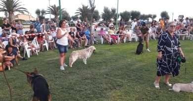 Grande successo per l'esposizione canina a Marina Velca