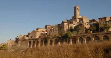 Ciclo di conferenze telematiche del Museo della città e del territorio di Vetralla