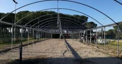 Istituto Cardarelli di Tarquinia, iniziati i lavori di montaggio della serra climatizzata alla sezione Agraria