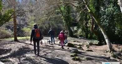 Parco Valle del Treja. In partenza la stagione di visite guidate 2020
