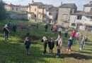 Torna la Festa dell'Albero a Bomarzo