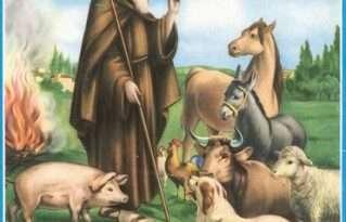 Le celebrazioni per Sant'Antonio Abate