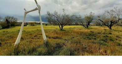 Terra Arte. Parco allestimenti arte contemporanea